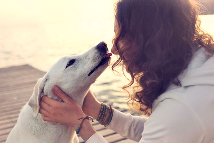 dog gently kissing woman on the face