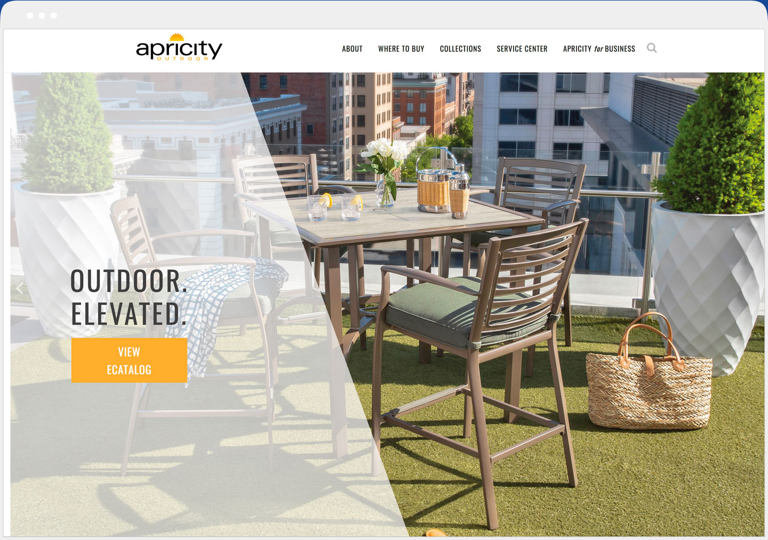 Apricity website desktop view